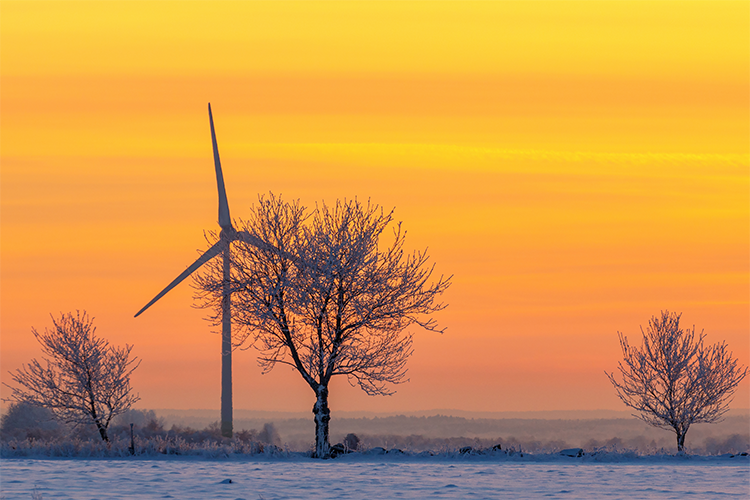 Snowy windmill in the sunset